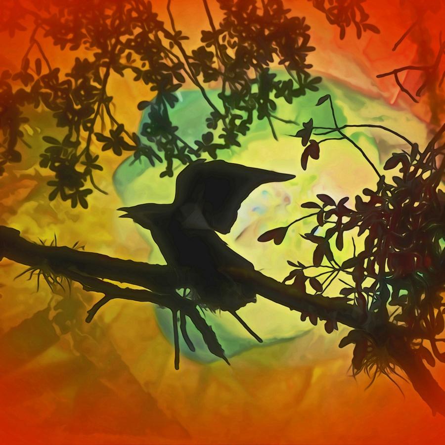 Sister Crow