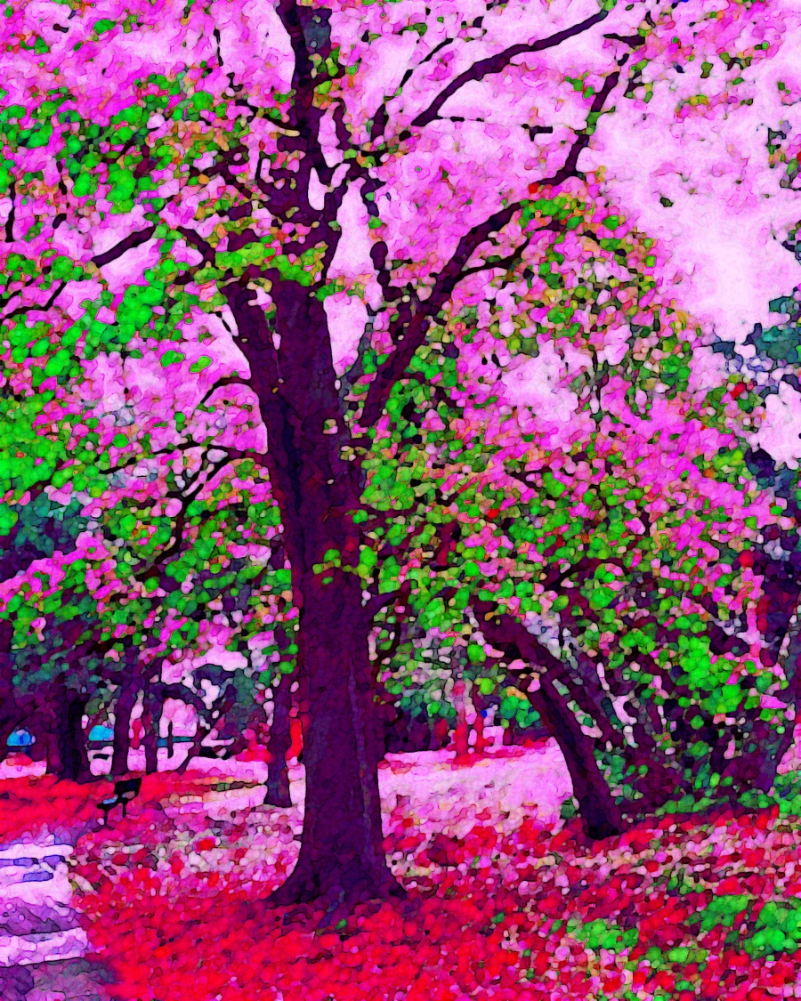 Spring1_resize