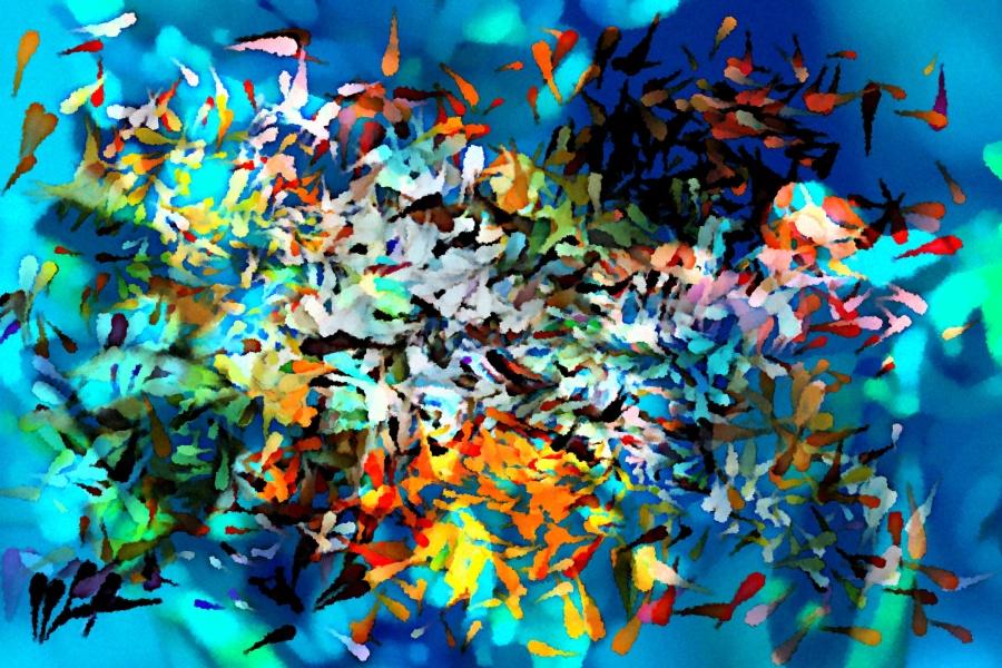 A Fishy Federation1
